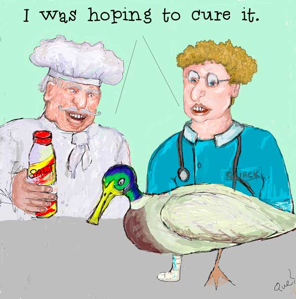 cartoon of a chef and vet with an injured duck - both are saying they want to cure it