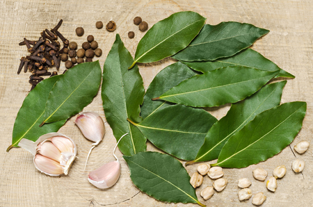 Photo of fresh bay leaves along with some spices